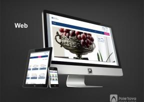 طراحی وب سایت - سیلویا