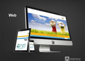 طراحی سایت شرکت ویسمن ارکان